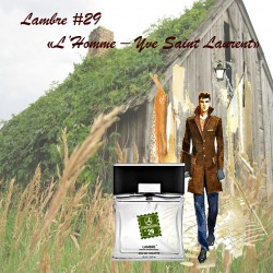 L'Homme – Yve Saint Laurent Ламбре 29